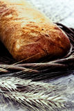 Fresh baked bread with wheat Stock Photos
