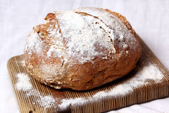 Fresh Baked Brerad Stock Photos
