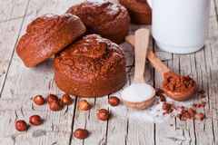 Fresh baked browny cakes, milk, sugar, hazelnuts and cocoa powde Royalty Free Stock Image