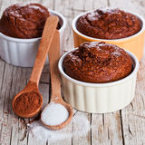 Fresh baked browny cakes, sugar and cocoa powder Royalty Free Stock Images