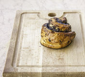 Fresh baked cake with poppy seeds Stock Photography