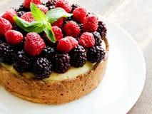 Fresh baked cheesecake Stock Photos