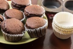 Fresh baked chocolate cup cakes on the plate with baking tray in the background Stock Photos