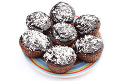 Fresh baked chocolate muffin with desiccated coconut on colorful plate Royalty Free Stock Image