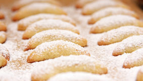 Fresh baked cookies. A view of rows of freshly baked cookies covered with white powdered sugar stock images