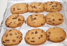 Fresh Baked Cookies on Foil Royalty Free Stock Image