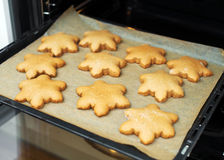 Fresh baked cookies. Royalty Free Stock Photos