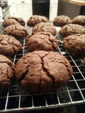 Fresh Baked Cookies. Warm, chewy, chocolatey cookies. Fresh from the oven royalty free stock image