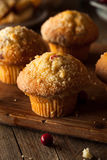 Fresh Baked Cranberry Muffins Stock Images