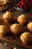Fresh Baked Cranberry Muffins Stock Photos