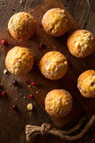 Fresh Baked Cranberry Muffins Stock Photography