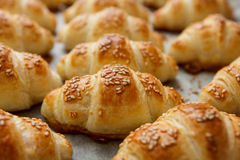 Fresh Baked Croissant Homemade Stock Photo