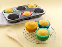 Fresh Baked Cup Cakes Stock Image