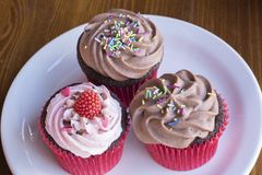 Fresh baked delicious different cupcakes served royalty free stock photography
