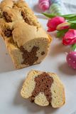 Fresh baked Easter Bunny Cake royalty free stock photography
