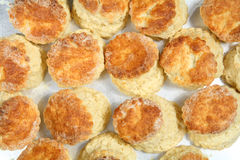 Fresh baked English scones from above Stock Photography