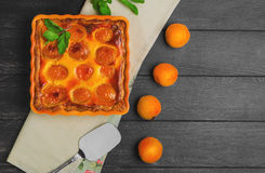 Fresh baked fruit pie tart with apricot Stock Photography