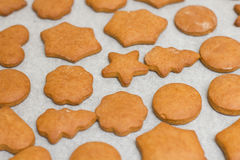 Fresh Baked Gingerbread Cookies Stock Image