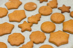Fresh Baked Gingerbread Cookies Stock Images