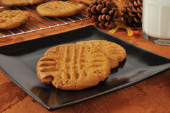 Fresh baked holiday cookies Stock Image