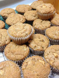 Fresh Baked Homemade Apple Muffins Royalty Free Stock Image
