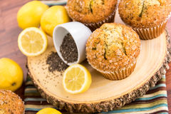 Free Fresh Baked Lemon Poppyseed Muffins Royalty Free Stock Photography - 54591537