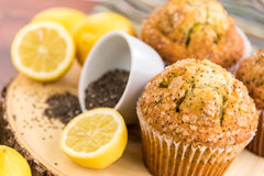 Fresh baked lemon poppyseed muffins Stock Photos
