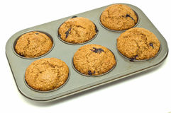 Fresh baked muffins Stock Photo