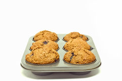 Fresh baked muffins Stock Photography
