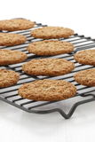 Fresh baked oatmeal cookies Royalty Free Stock Images