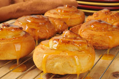 Fresh baked Orange Cinnamon Rolls Stock Photography
