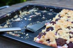 Fresh baked plum cake on oven tray Stock Photos