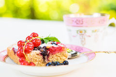 Fresh baked red and black currant berries cake Stock Image