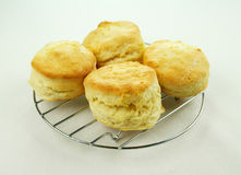 Fresh Baked Scones Stock Photography