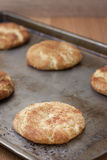 Fresh baked Snicker Doodle Cookies Royalty Free Stock Photography