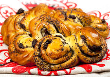 Fresh baked sweet bread with sultana Royalty Free Stock Photography