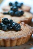 Fresh Baked Tarts Stock Images
