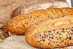 Fresh baked traditional bread Stock Photography