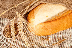 Fresh baked traditional bread Royalty Free Stock Images
