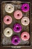 Fresh Baked Vanilla Bean Iced Doughnuts Stock Photos