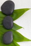 Fresh bamboo leaves with basalt massage stones Stock Image
