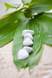 Fresh bamboo leaves with white spa stones Stock Photography