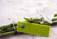 Fresh bamboo with an orchid and blank tag Stock Photos