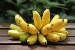 Fresh banana Royalty Free Stock Image