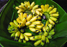 Fresh banana Royalty Free Stock Images