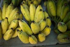 Fresh banana Stock Image