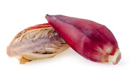 Fresh banana flowers with cross sections on white Stock Photography
