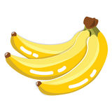 Fresh Banana Fruit Royalty Free Stock Photo