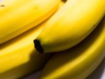 Fresh banana fruits. Close-up of fresh banana fruits royalty free stock images