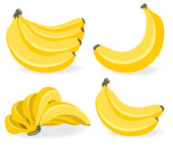 Fresh banana fruits Stock Image